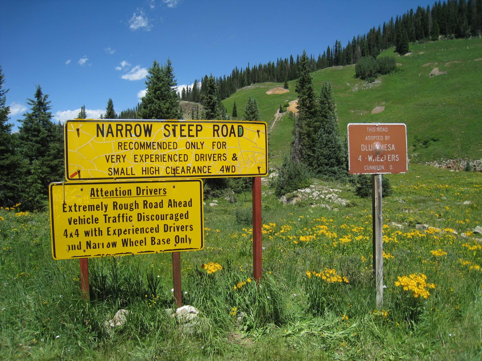 Signs and wildflowers